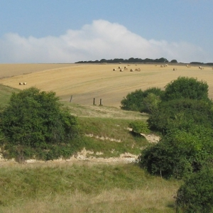 Rolling hills of the South Downs