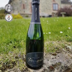 A bottle of Blackdown Ridge, Primordia