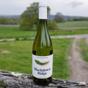 A bottle of sauvignon Blanc